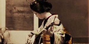 Cortinas Roller en Neuquén y Deco Japonesa